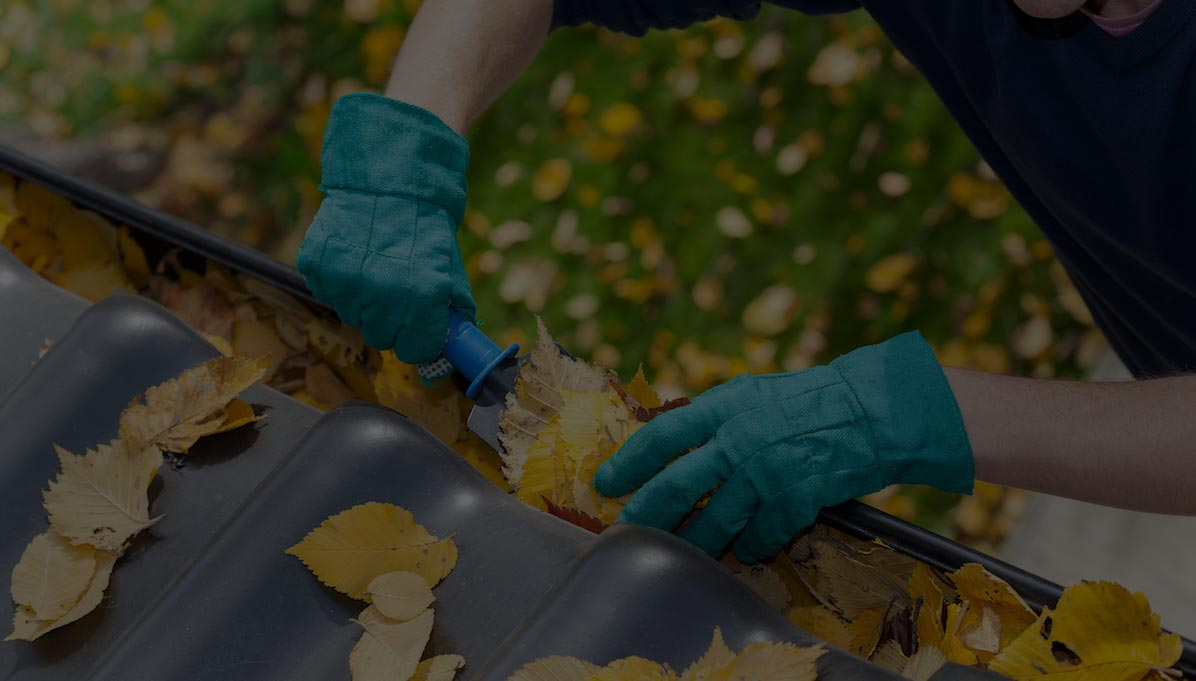 Gutter Cleaning Services Ethan S Roof Amp Exterior Washing