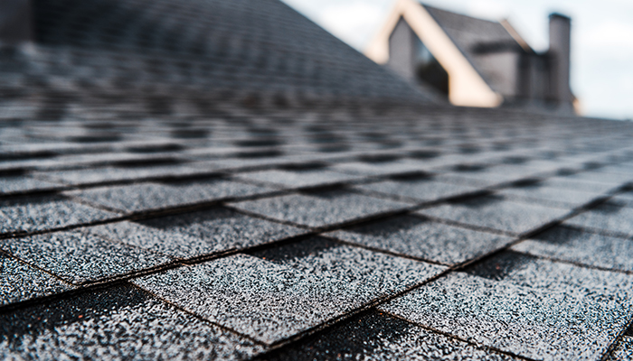 Why is it Important to Keep Your Roof Clean?