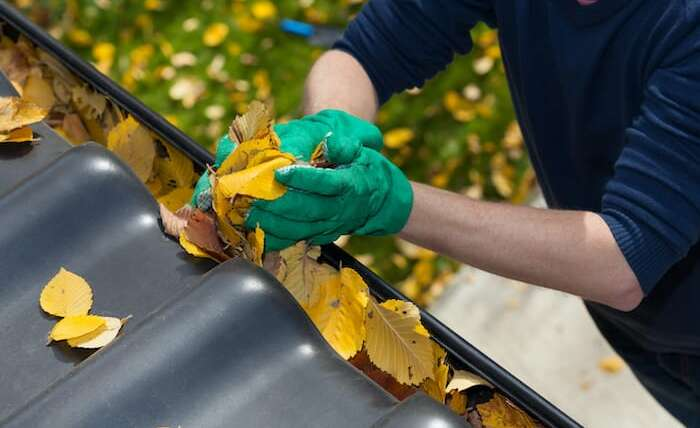 Best Gutter Cleaning Tips